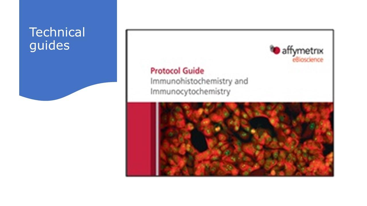 Protocol guides